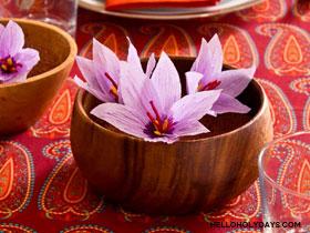 DIY Saffron Flowers